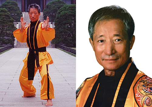 ETERNAL GRAND MASTER HAENG UNG LEE