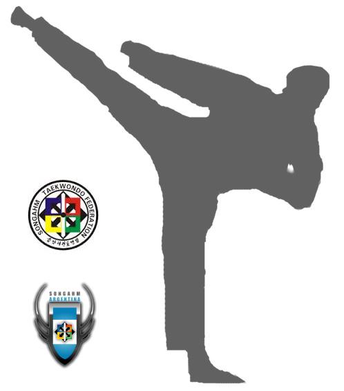 Taekwondo-gris-logos